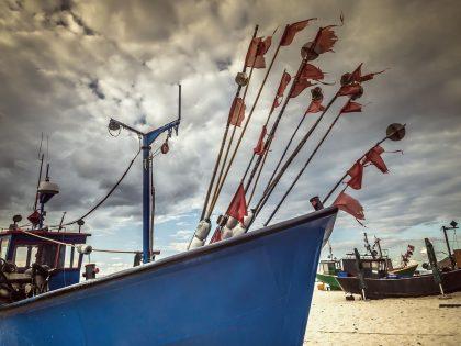 """Morski Instytut Rybacki – PIB przystępuje do badania rynku produktów rybnych na obszarze Lokalnej Grupy Rybackiej """"Zalew Szczeciński"""""""