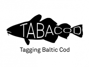 Launch of the project TABACOD – Tagging Baltic Cod