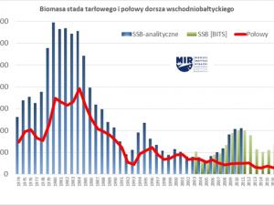 Komunikat o stanie zasobów ryb Bałtyku i zalecanych przez ICES dopuszczalnych połowach (TAC) w 2019 roku
