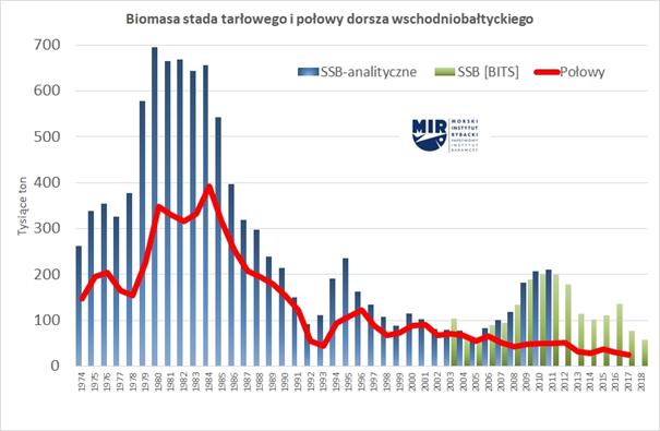 Po%C5%82owy-i-biomasa-stada-rozrodczego-